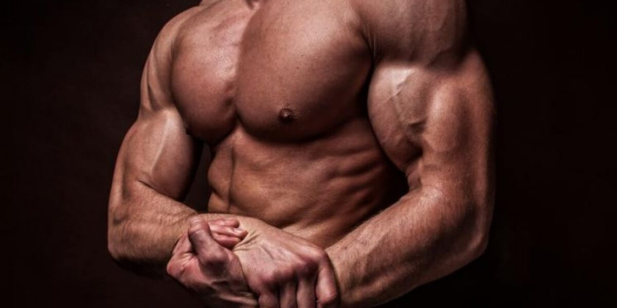 The New Legal Steroids For Sale - How Well Do They Work ?